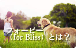 for Bliss(フォービー)とは
